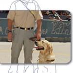 Persona con perro guia