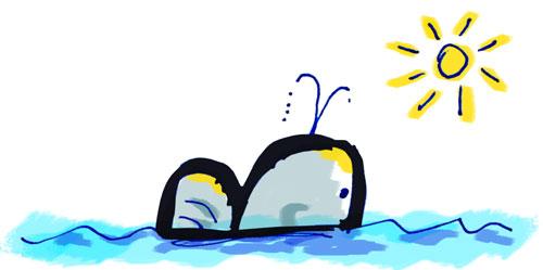 B de ballena